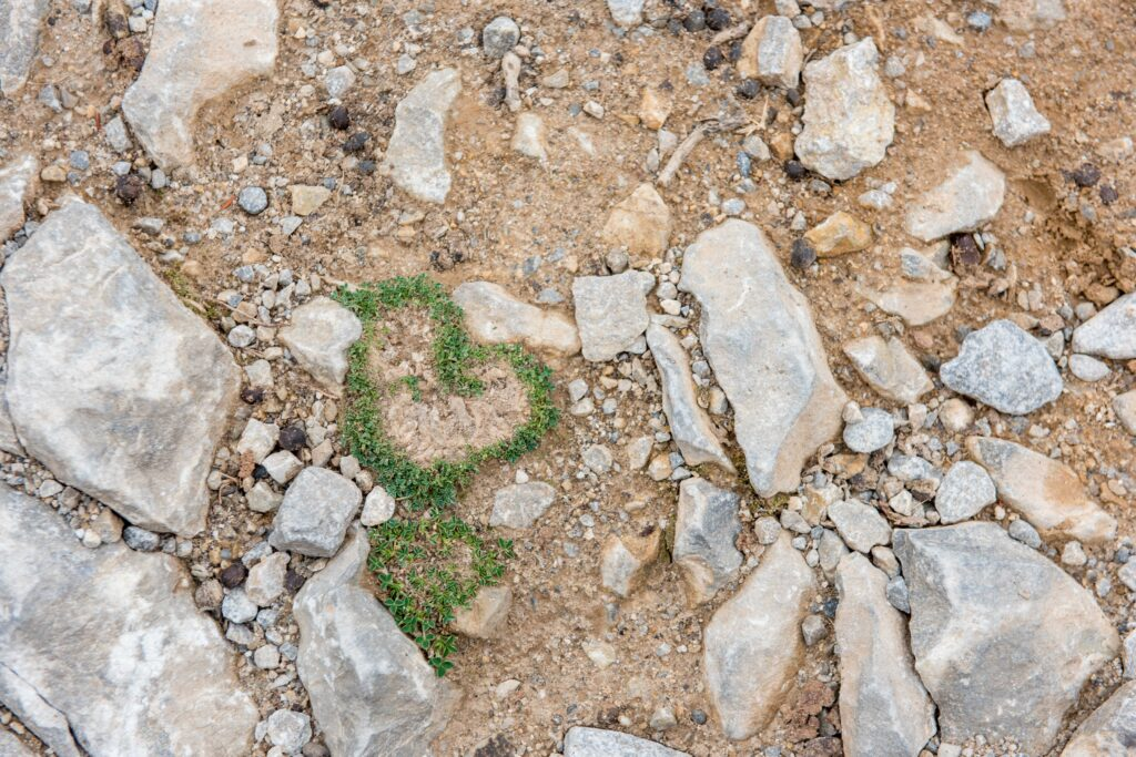 green love hearts on the ground